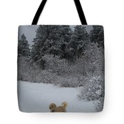 Traildog Loving The Winter Scene In The Flatirons Tote Bag