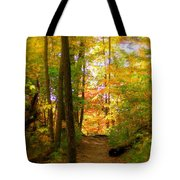 Trailhead Light Tote Bag by Ed Smith