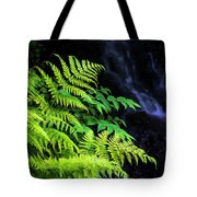 Trailside Plants Tote Bag