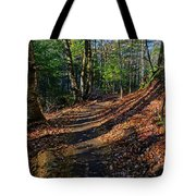 Train On The Adirondack Log Keene Valley Ny New York Tote Bag