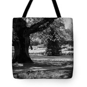 Tralee Town Park Ireland Tote Bag