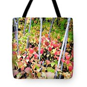 Tranquil Days Of Autumn Tote Bag