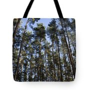 Tranquil Forest Tote Bag