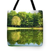 Tranquil Landscape At A Lake 2 Tote Bag