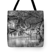 Tranquil May 2016 Bw Tote Bag