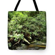 Tranquil Mountain Laurel Stream In The Great Smoky Mountains National Park Tote Bag
