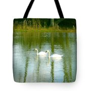 Tranquil Reflection Swans Tote Bag