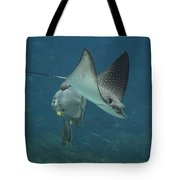 Tranquil Sea Creatures Tote Bag
