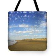 Tranquil Seashore Tote Bag