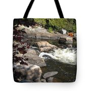 Tranquil Spot Tote Bag