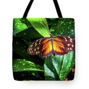 Tranquil Spots Tote Bag