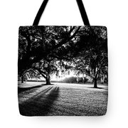 Tranquility Amongst The Oaks Tote Bag
