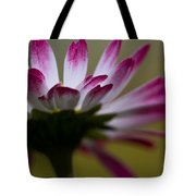 Tranquility I Tote Bag