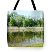Tranquility Reflected Tote Bag