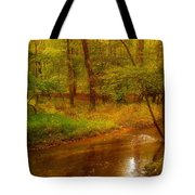 Tranquility Stream - Allaire State Park Tote Bag