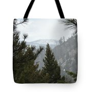 Transcendental  Introspection Tote Bag