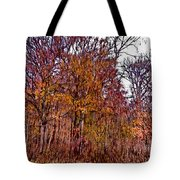 Transitions - Painterly Tote Bag