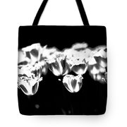 Transparence Tote Bag