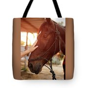 Treating From Depression With The Help Of A Horse Tote Bag