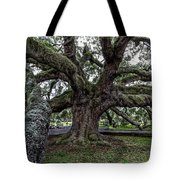 Treaty Oak 12 14 2015 027 Tote Bag
