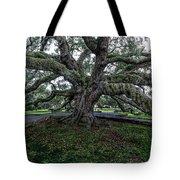 Treaty Oak 12 14 2015 028 Tote Bag
