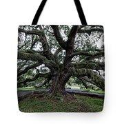 Treaty Oak 12 14 2015 029 Tote Bag