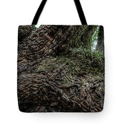 Treaty Oak 12 14 2015 042 Tote Bag