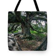 Treaty Oak 12-14-2015 056 Tote Bag