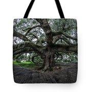Treaty Oak 12-14-2015 069 Tote Bag