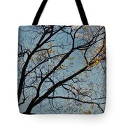 Tree Against The Sky Tote Bag