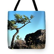 Tree And Rock Tote Bag