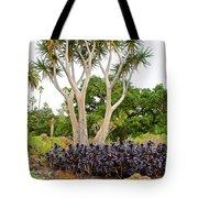 Tree And Succulents In Huntington Desert Gardens In San Marino-california Tote Bag