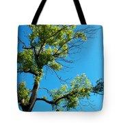 Tree Art 1 Tote Bag