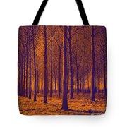 Tree Art 56y Tote Bag