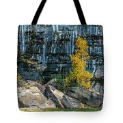 Tree At Picture Rock Cruise Tote Bag