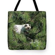 Tree Bandit Tote Bag