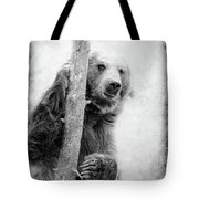 Tree Bear Tote Bag