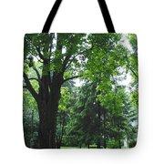 Tree Bench Tote Bag