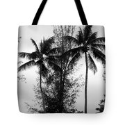 Tree Between The Trees Tote Bag