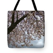 Tree Blossoms Landscape 11 Spring Blossoms Art Prints Giclee Sky Storm Clouds Tote Bag