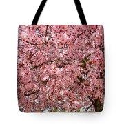 Tree Blossoms Pink Blossoms Art Prints Giclee Flower Landscape Artwork Tote Bag