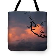 Tree Branch At Sunset Tote Bag