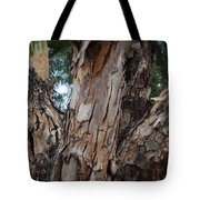 Tree Branch Texture 3 Tote Bag
