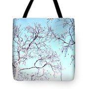 Tree Branches Reaching For Heaven 2 Tote Bag
