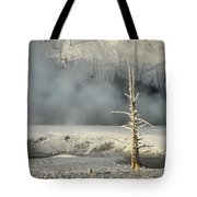 Tree By The Thermal - Yellowstone Tote Bag