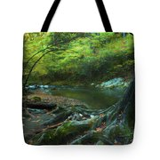 Tree By Water Tote Bag