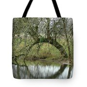 Tree Cannon Tote Bag