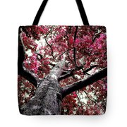 Tree Canopy Red Tote Bag