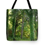 Tree Cathedral 2 Tote Bag