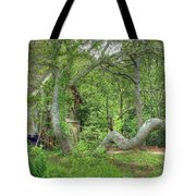 Tree Curves Two Tote Bag